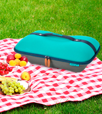 Review of Arctic Zone Deluxe Hot/Cold Insulated Food Carrier
