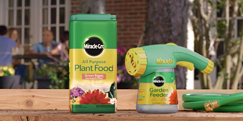 Review of Miracle-Gro Water Soluble All Purpose Plant Food