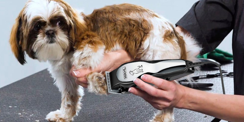 Review of Wahl 9281-210 Clipper Pet-Pro Dog Grooming Kit