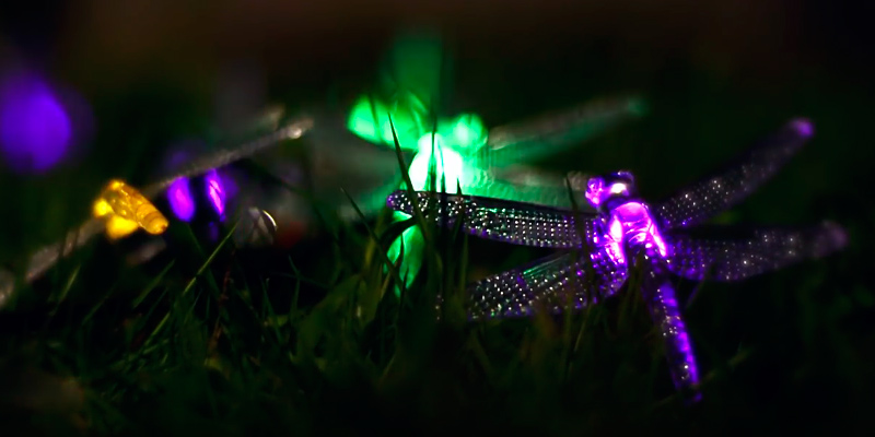Review of Icicle J&LS-1AA-20L Dragonfly Solar String Lights