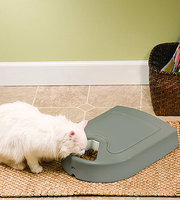 Review of PetSafe 5-Meal Automatic pet feeder