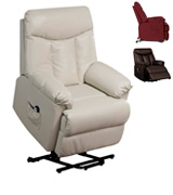 Domesis Renu Leather Power Lift Chair