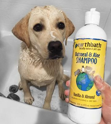 Review of Earthbath All Natural Pet Shampoo with Conditioner