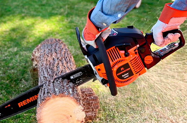 Best Gas Chainsaws for Limbing, Bucking, and Felling Trees