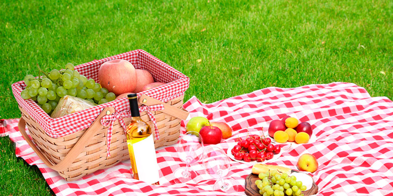 Review of CALIFORNIA PICNIC Double Folding Handles Picnic Basket Natural Woven Woodchip