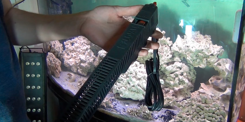 Review of Fluval A774 Electronic Heater with Dual Temperature Sensors