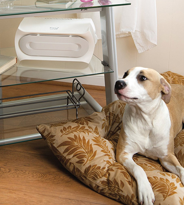 Review of Hamilton Beach 04384 Air Purifier for Allergies & Pets