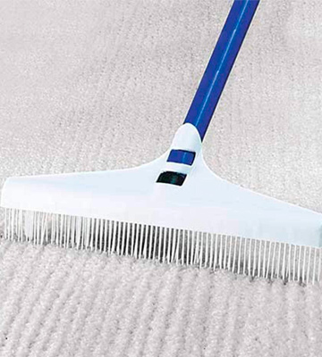 Review of BCW 11-7/8 long x 5 wide Carpet Rake