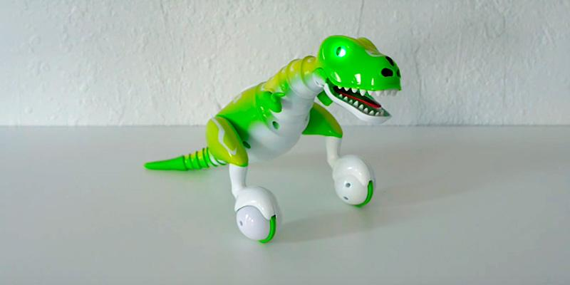 Review of Zoomer Dino Remote Control Robot