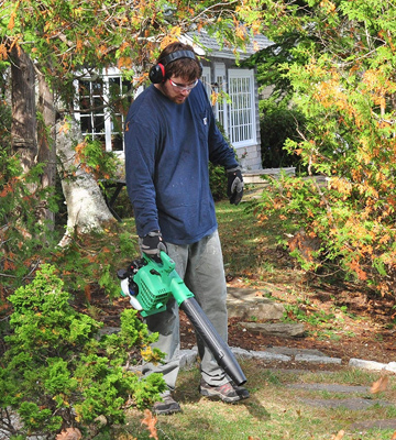 Review of Hitachi RB24EAP CARB Compliant Gas Powered Handheld Leaf Blower
