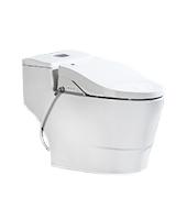 Stupendous 5 Best Bidet Toilet Combos Reviews Of 2019 Bestadvisor Com Caraccident5 Cool Chair Designs And Ideas Caraccident5Info