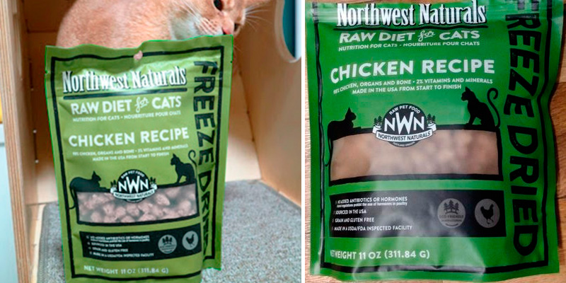 Review of Northwest Naturals Freeze Dried Raw Cat Food Nibbles