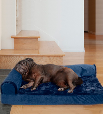 Review of Furhaven Plush Orthopedic L-Shaped Chaise Lounger & Traditional Sofa-Style Dog Bed