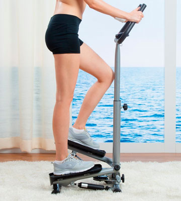 Review of Sunny Health & Fitness Twister Stepper with Handle Bar