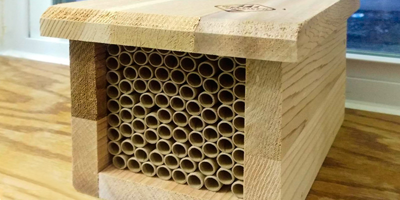 Review of Welliver Outdoors WPBEE Mason Bee House with Replaceable Tubes