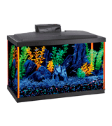 Aqueon NeoGlow (100530343) 10 Gallon Aquarium Starter Kits