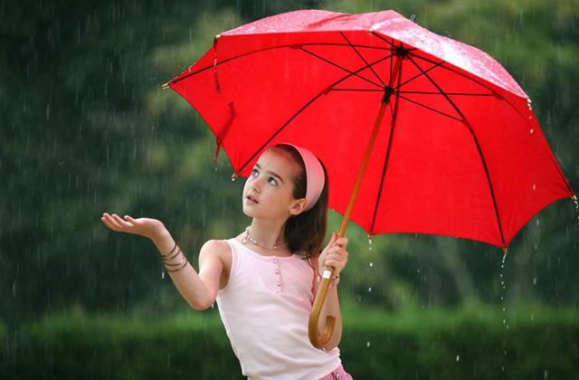 Best Rain Umbrellas to Use in Wind and Rain