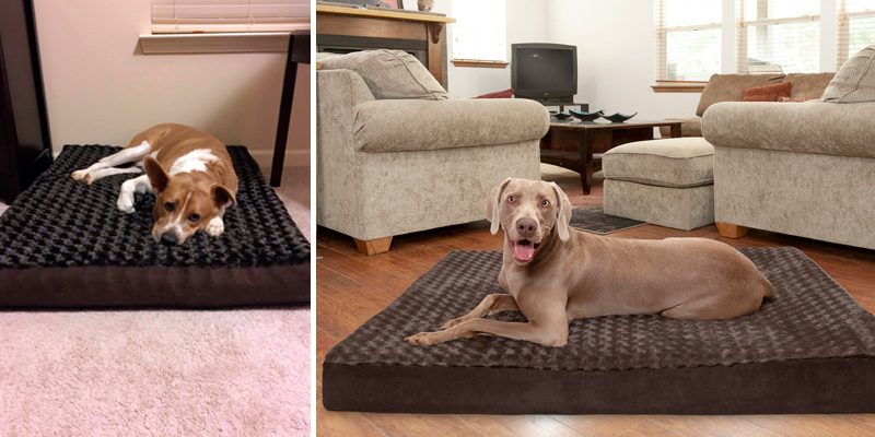Review of Furhaven Traditional Orthopedic Rectangular Mattress Dog Bed