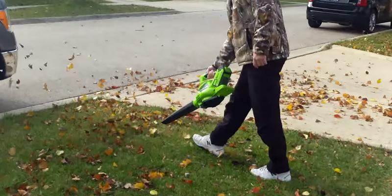 Detailed review of GreenWorks 24322 Cordless Leaf Blower & Vacuum, 4Ah Battery and Charger Included