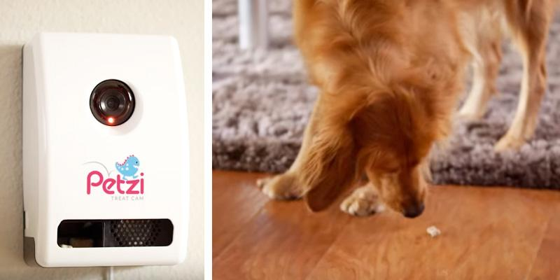 Petzi TreatCam With a Treat Dispenser in the use