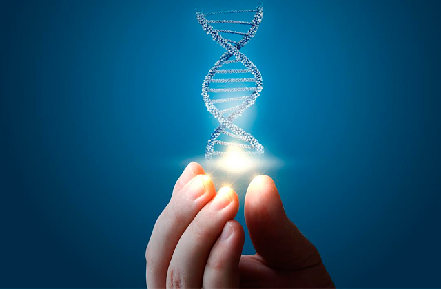 Best DNA Testing Services
