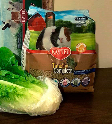 Review of Kaytee Timothy Complete Guinea Pig Food