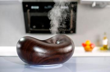 Best Essential Oil Diffusers to Improve Your Family's Health