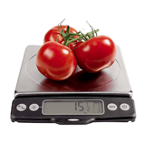 OXO Good Grips 11 lb Stainless Steel Food Scale