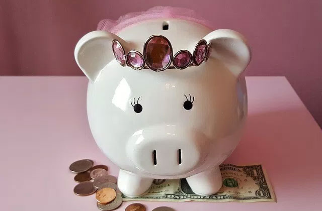 Best Piggy Banks for Adults and Children