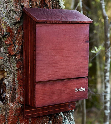 Review of Kenley Large Double Chamber Bat House