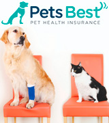 Pets Best Pet Insurance for Dogs and Cats