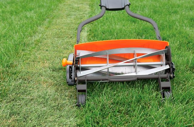 Best Reel Push Lawn Mowers to Keep Your Lawn Tidy