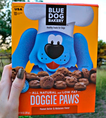 Review of Blue Dog Bakery iBD 10125 DP 6/10oz Dog Treats