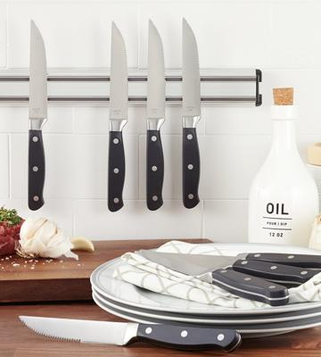 Review of AmazonBasics 0181 8-Piece Steak Knife Set