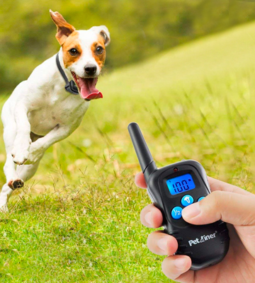 Review of Petrainer PET998DBB 330 Remote Dog Training E-collar