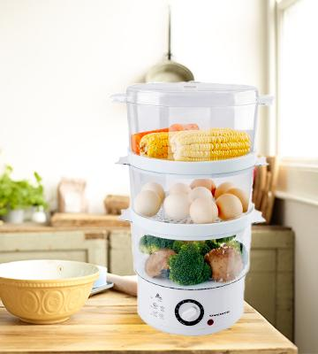 Review of Ovente FS53 W Electric Vegetable and Food Steamer