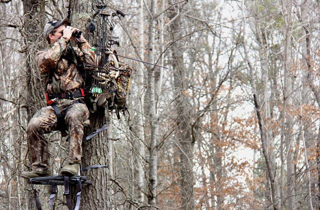 Best Treestands to Hunt the Prey