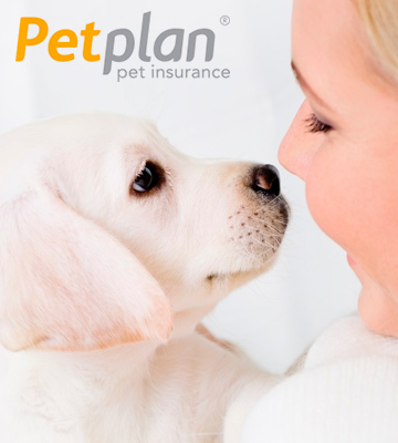 Review of Petplan Pet Insurance