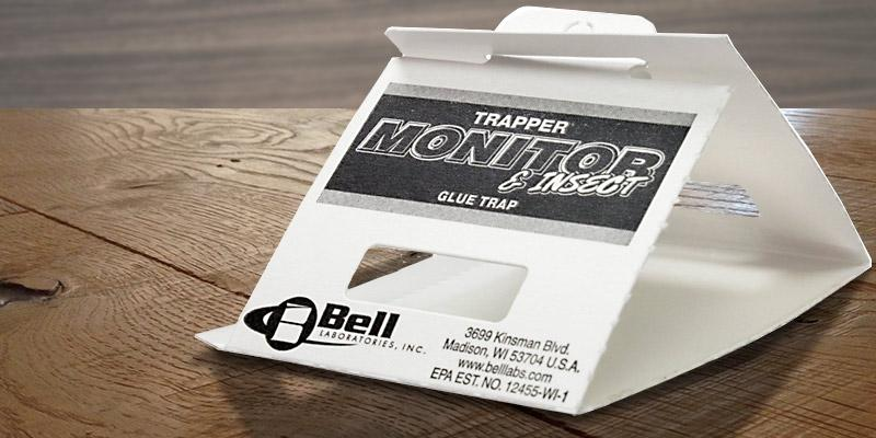 Review of Bell Trapper Insect Trap
