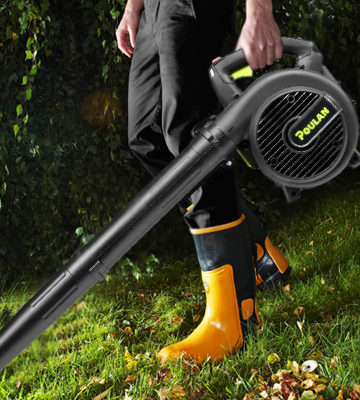 Review of Poulan Pro PLB26 Powerful Gas Handheld Blower