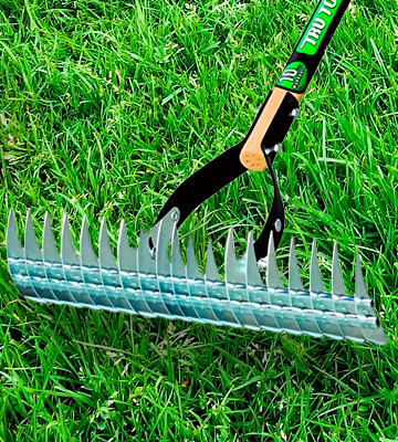 Review of Truper 32120 Tru Tough Thatching Rake, 2 Pack