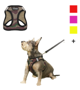 Best Pet Supplies Voyager Step-in Air Dog Harness