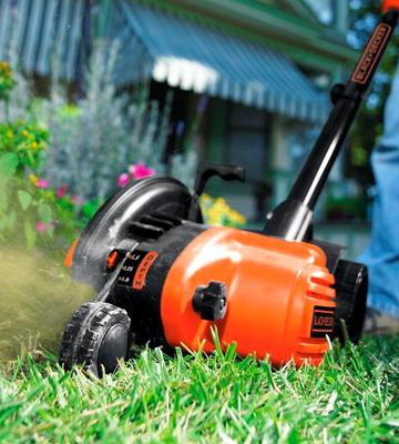 Review of BLACK+DECKER LE750 Edge Hog 2-1/4HP