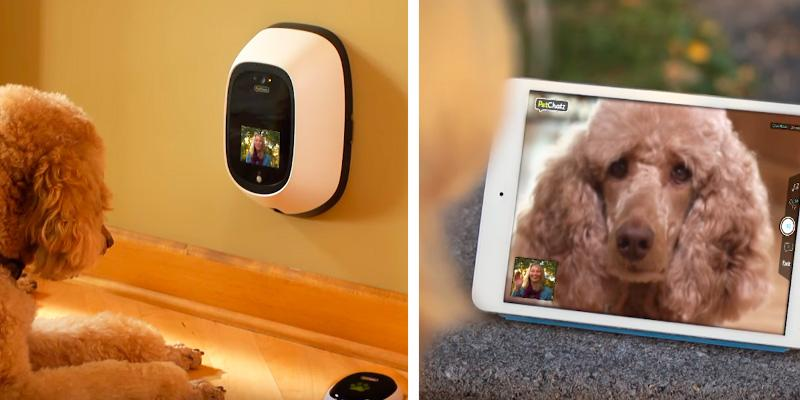 Review of PetChatz HD 2-Way Pet Cam with Calming Scent