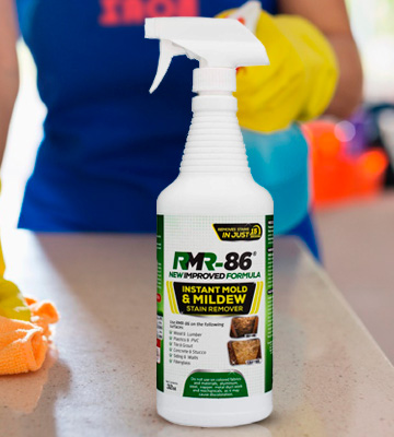 Review of RMR Brands RMR-86 Instant Mold Stain & Mildew Stain Remover