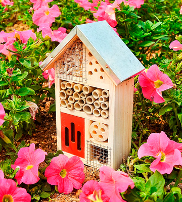 Review of Niteangel Wooden Insect House for Butterfly