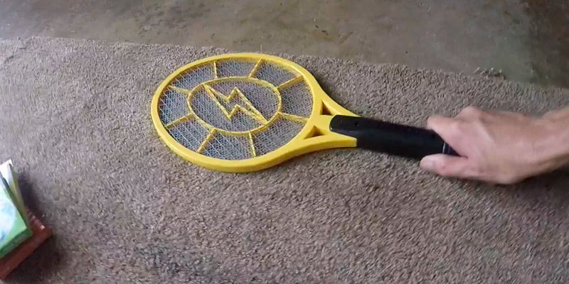 Review of Beastron BBZ-01 Electric Fly Swatter