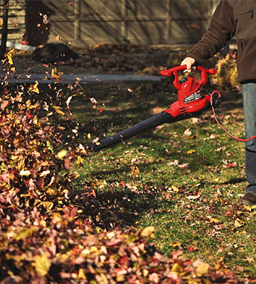 Review of Toro 51619 Ultra Ultra Leaf Blower & Vacuum