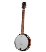 Jameson Guitars 6 String with Closed Back Resonator Banjo