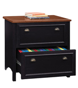 Bush Furniture WC53984-03 Stanford 2 Drawer Lateral File Cabinet